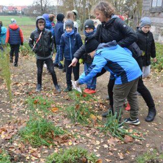Edukacja dzieci w ogrodzie ziołowym.