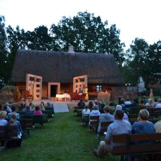 Publiczność w czasie spektaklu
